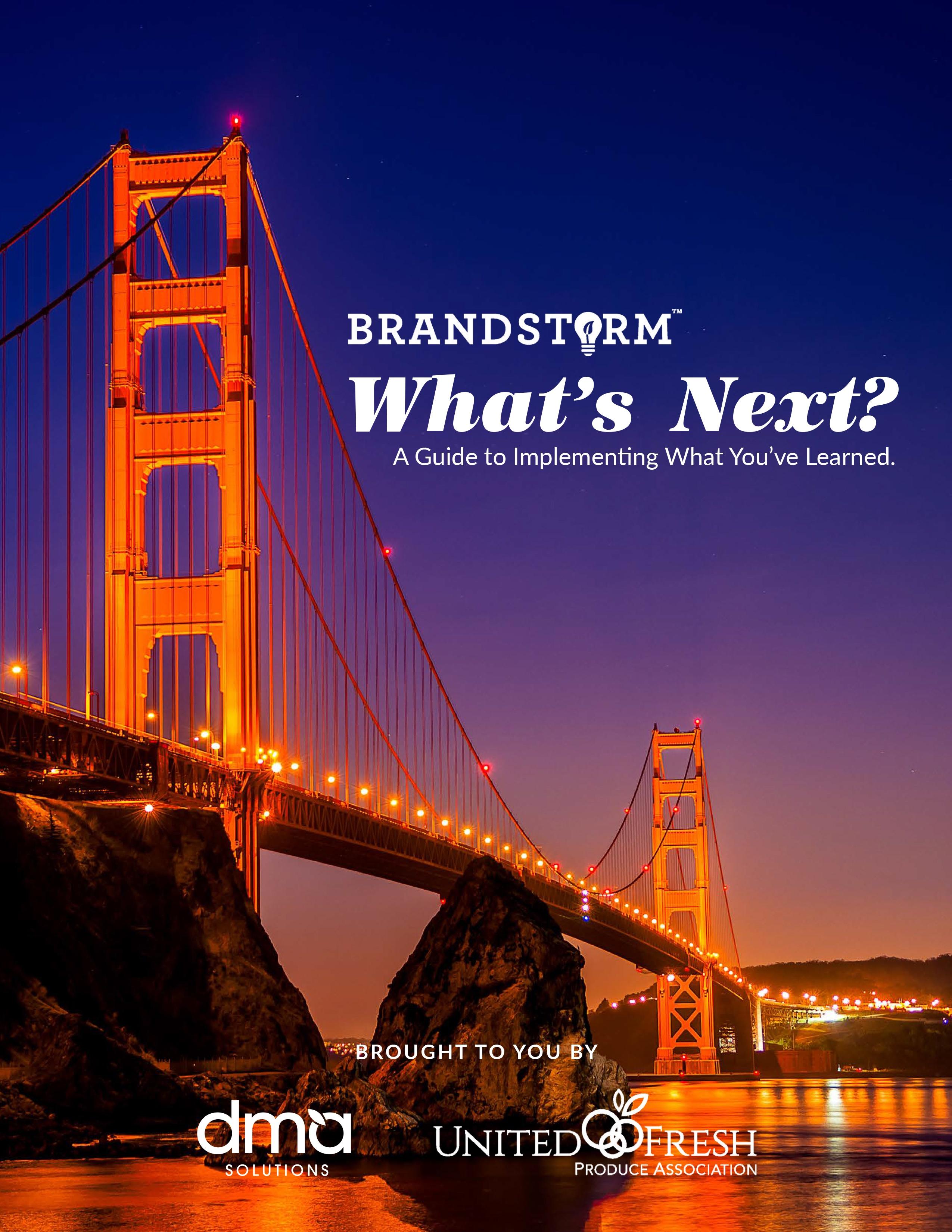 BrandStorm ebook cover cover.jpg